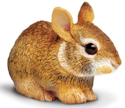 Eastern Cottontail Baby Rabbit Toy Lifesize Replica
