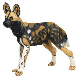African Wild Dog Toy Miniature Replica At Anwo Animal World