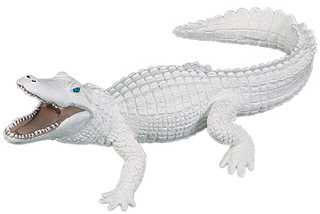 White Alligator Toy Miniature At Animal World