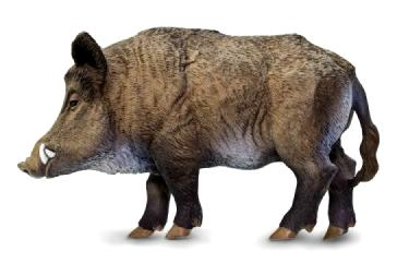 Wild Boar Pig Toy Miniature Replica At Anwo Com Animal World