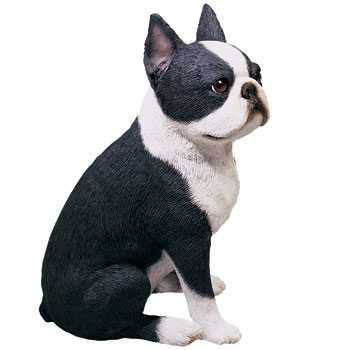 Boston Terrier Figurine Sandicast Sitting Pose Os105 At Animal World