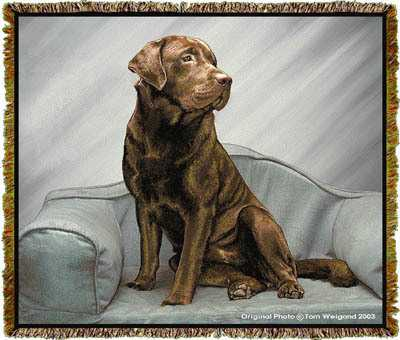 Chocolate Lab Blanket Tapestry Throw Afghan At Anwo Com