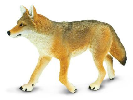 Large Coyote Toy Miniature Wildlife Wonder At Anwo Com