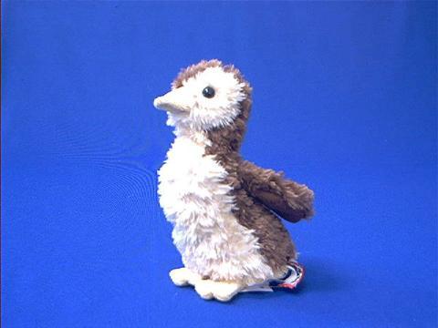 Mallard Baby Duck Plush Stuffed Animal At Animal World