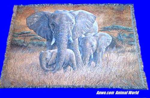 Elephant Blanket Throw Tapestry At Anwo Com Animal World