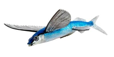 flying fish toy miniature replica at anwo animal world
