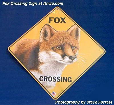 Fox Crossing Sign At Animal World 174