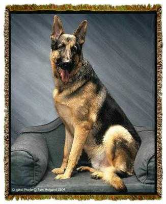 german shepherd blanket german shepherd blanket tapestry throw afghan at anwo com 249