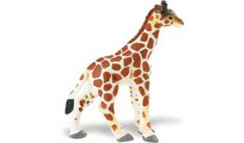 Giraffe Baby Toy Miniature Standing At Animal World