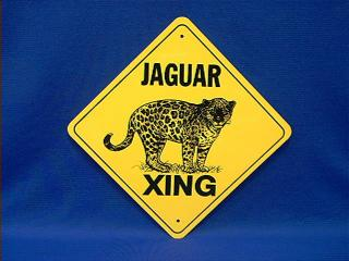 Jaguar Crossing Sign Usa At Animal World 174