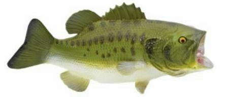 Largemouth bass fish toy miniature for Swimming fish cat toy