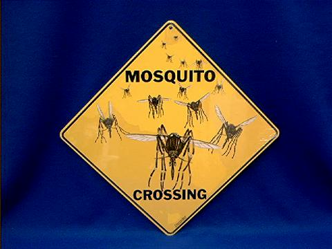 Mosquito Crossing Sign At Animal World 174