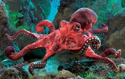 Octopus Puppet At Animal World 174