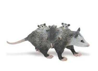 Opossum Toy Miniature Adult With Babies At Animal World 174