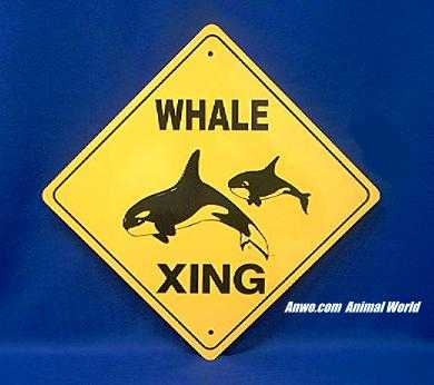 orca killer whale crossing sign