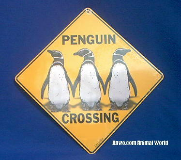Penguin Crossing Sign At Anwo Com Animal World 174