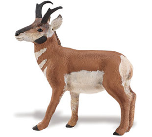 Pronghorn Antelope Buck Toy Miniature At Animal World 174