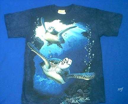 Sea turtle t shirt seaturtles youth x large 18 20 usa at for Turtle t shirts online