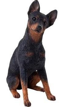 Miniature Pinscher Figurine Black Tan Midsize Ms105 By