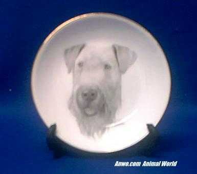 airedale plate porcelain