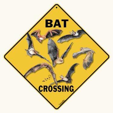 bat crossing sign anwo animal world