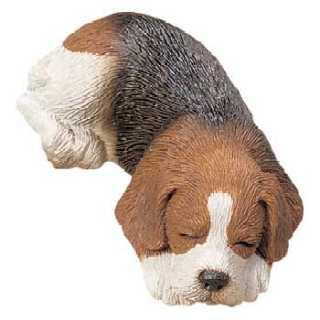 beagle_sand_snzr_1.jpg