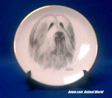 bearded collie plate porcelain