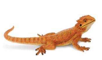 bearded dragon toy miniature replica safari