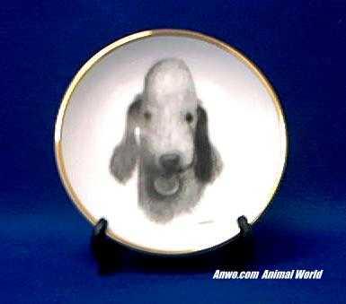 bedlington terrier plate gold trim