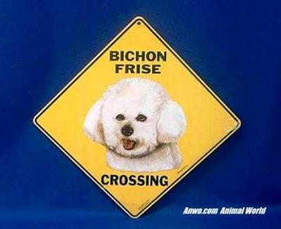 bichon frise crossing sign