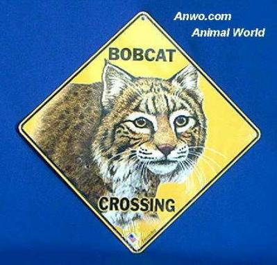 bobcat crossing sign face