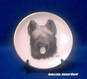 briard plate porcelain