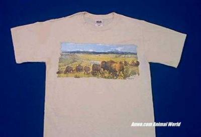 buffalo t shirt