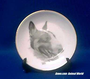 bull terrier plate porcelain