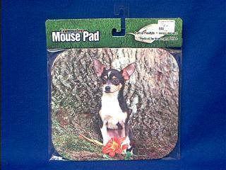 chihuahua mousepad tri color