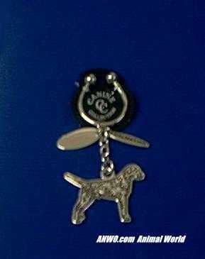 dalmatian keychain silver