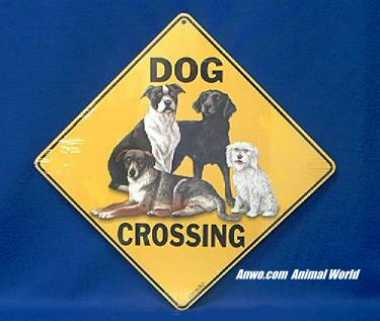 dog crossing sign