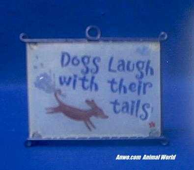 dogs laugh with their tails sign