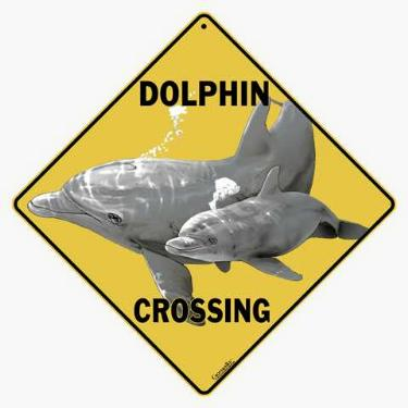 dolphin crossing sign anwo animal world