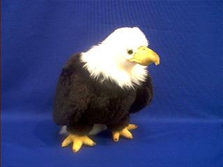 eagle stuffed animal