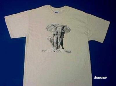 elephant shirt usa animal world