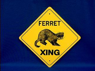 ferret crossing sign