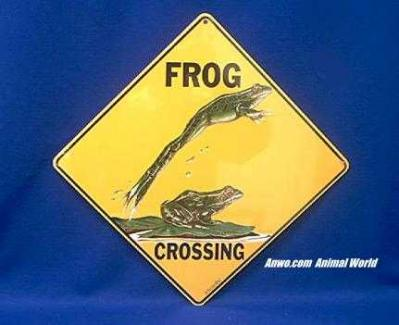 frog crossing sign color