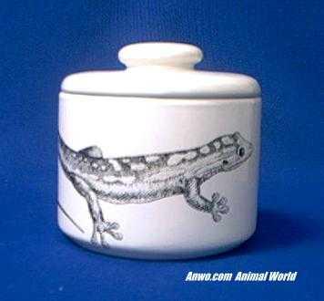 gecko jar porcelain