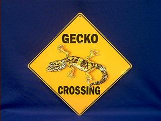 gecko crossing sign
