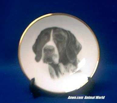 german shorthair pointer plate porcelain