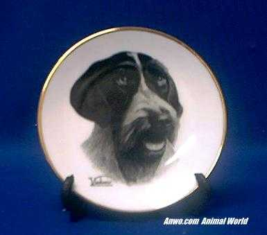 german wirehair pointer plate porcelain