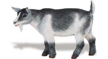 goat toy pygmy nanny