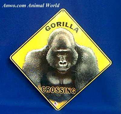 gorilla crossing sign usa