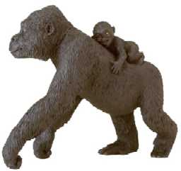 gorilla with baby toy